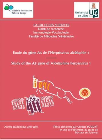 Phd Thesis In Medicinal Chemistry